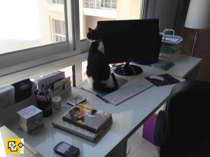 131002 Home office and oreo